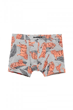 Bonds Boys Hipster Trunk Le Tiger