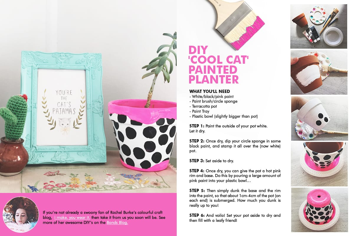DIY 'Cool Cat' painted planter