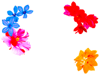 Disney Jungle Book - Explore